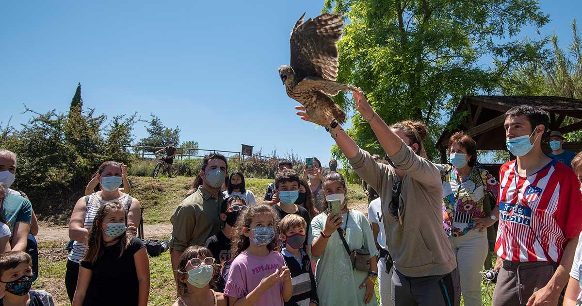 """43 aves recuperan su libertad gracias al voluntariado de """"Ayúdale a volar"""""""