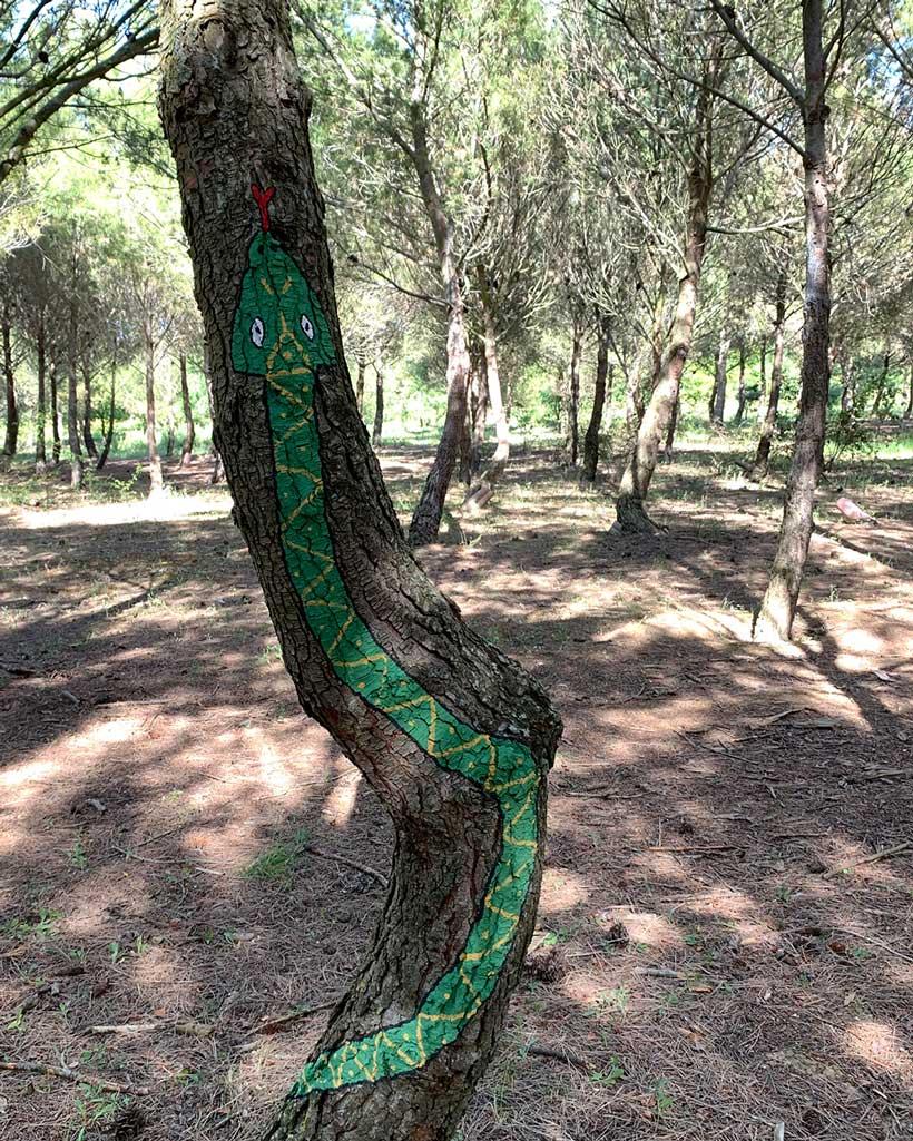 Bosque biodivertido