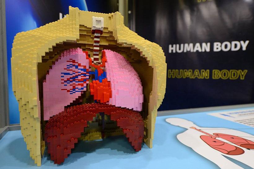 expo-lego-zubiarte