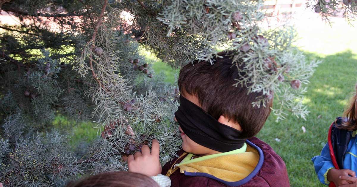 Actividades gratuitas de educación ambiental en Viguera y Panzares