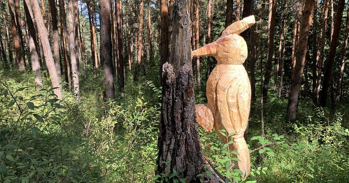 Ruta entre los troncos tallados de Ribavellosa